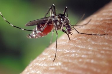 10 Kids with Malaria in Kenya